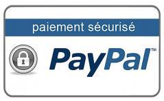 Paypal log